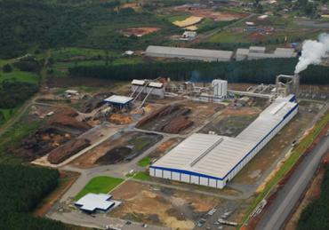 Sudati é a segunda maior exportadora de madeira do Brasil